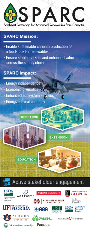 SPARC poster for download